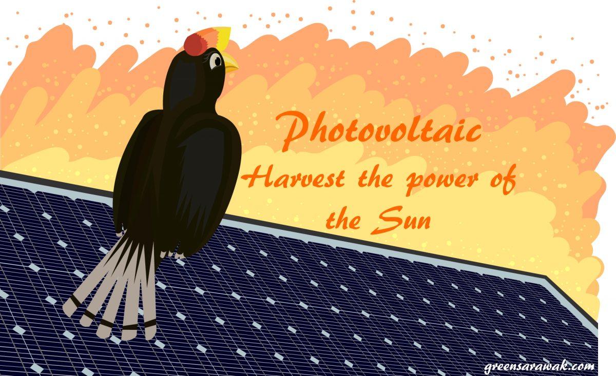 光伏 – 收获太阳的力量